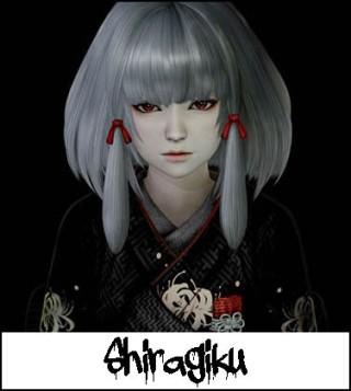 6-Shiragiku